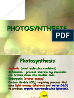9.-Photosynthesis1.ppt
