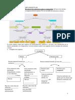 UNIDAD 1 La Teor a at Mico Molecular Ejercicios