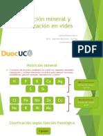 Fertilización en vides.pdf