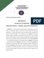 Av. Teoria y Practica - Practica 3