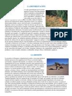 La Deforestacion y La Erosion