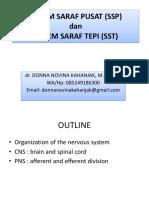 Sistem Saraf Pusat (Ssp) Dan Sistem Saraf Tepi (Sst)