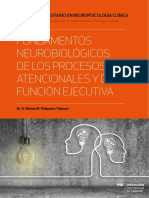 fundamentos neurobiologicos