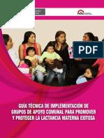 Guia Tecnica de implementacion grupos de apoyo comunal para promever y proteger la lactancia materna exitosa