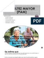 Adultez Mayor (Pam)