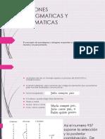 Relaciones Paradigmaticas y Sintagmaticas