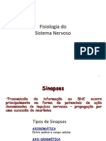 Aulas 2, 3 - Sentidos Gerais 2012
