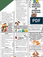 PLEGABLE CHARLA TENENCIA ADECUADA ANIMALES DE CIUDAD.pptx