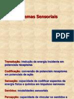 Sistemas sensoriais