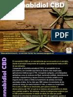 Cannabidiol CBD usos terapéuticos