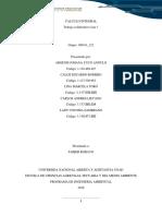 Trabajo Colaborativo Fase_1 (1)