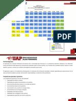 P11-DERECHO-1..pdf