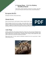 Fakta Dasar Tentang Singa