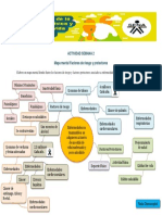 S2. Mapa mental - semana 2.pdf