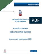 UnidadII-Datos-AlgoritmoyPseudocodigos.pdf