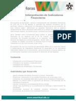 Calculo Interpretacion Indicadores Financieros