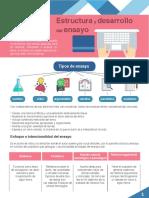 M05_S1_Estructura y desarrollo del ensayo_PDF.pdf