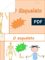 4.º ano - O_esqueleto