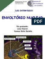 Envoltório Nuclear