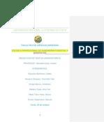 Monografía_grupo_n°_4[1].docx