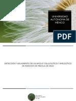expo. practica 1 .pptx