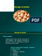 Storage Potato