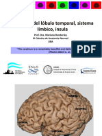 rmn temporal + insula