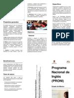 Tríptico PRONI.docx