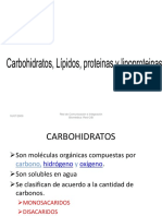 CARBOHIDRATOS  LIPIDOS.ppt