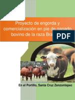 Engorda_y_comercializacion_de_ganado_bov.pdf