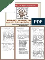 Aplicación de Las Normas y Precauciones Universales de Bioseguridad Del Sector Salud