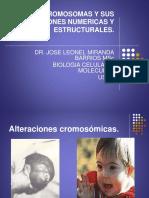 Cromosomas y Sus Alteraciones Numericas y Estructurales