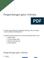 Pengembangan galur mikroba