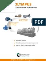 Turbine  control  services