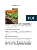 ALIMENTATIA_IN_COLECISTITA.doc