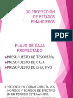 Guía No 30 Proyección de Estados Financieros