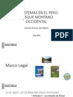 Bosque Montano
