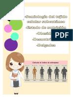 Semiología Del Tejido Celular Subcutáneo