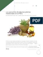 En Piura Verde Conoce Los Beneficios de Las Plantas Medicinales