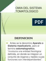 ANATOMIA DEL SISTEMA ESTOMATOGNATICO 2.ppt