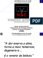Dor.pdf