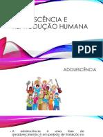 Adolescência e Reprodução Humana
