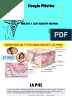 cirugia plastica Tema1 piel y herdias