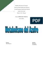 metabolismo azufre