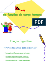 Asfuncoes Do Corpo Humanojogo