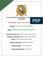 Informe 5 Cahuana Pirca