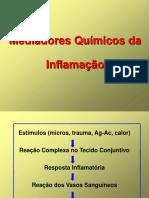 aula6-perodomediadoresqumicos-111101073335-phpapp02.ppt