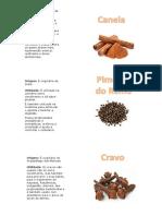 Especiarias1