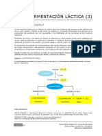 73_Fermentacion_lactica_chucrut.pdf