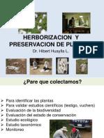 herborizacion y perservacion